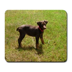 Red Doberman Puppy Large Mousepads