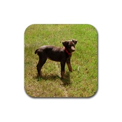 Red Doberman Puppy Rubber Square Coaster (4 pack)