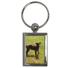 Red Doberman Puppy Key Chains (Rectangle)