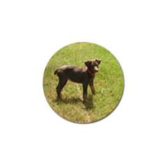 Red Doberman Puppy Golf Ball Marker