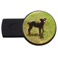 Red Doberman Puppy USB Flash Drive Round (1 GB)