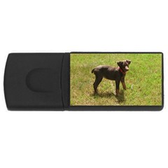 Red Doberman Puppy USB Flash Drive Rectangular (1 GB)