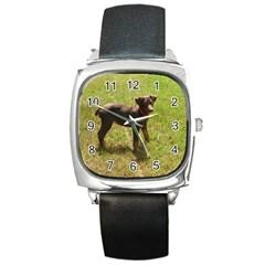 Red Doberman Puppy Square Metal Watch