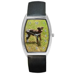 Red Doberman Puppy Barrel Style Metal Watch