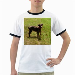Red Doberman Puppy Ringer T-Shirts