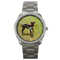 Red Doberman Puppy Sport Metal Watch