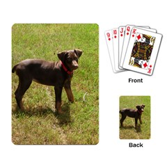 Red Doberman Puppy Playing Card