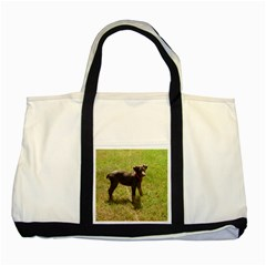 Red Doberman Puppy Two Tone Tote Bag