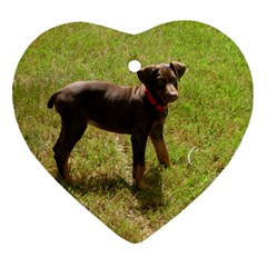 Red Doberman Puppy Heart Ornament (Two Sides)