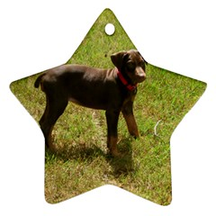 Red Doberman Puppy Star Ornament (Two Sides)