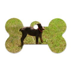 Red Doberman Puppy Dog Tag Bone (Two Sides)