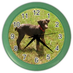 Red Doberman Puppy Color Wall Clocks