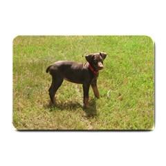 Red Doberman Puppy Small Doormat