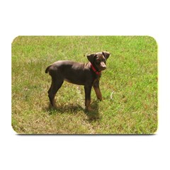 Red Doberman Puppy Plate Mats