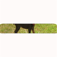 Red Doberman Puppy Small Bar Mats