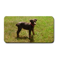 Red Doberman Puppy Medium Bar Mats