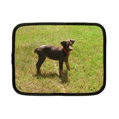 Red Doberman Puppy Netbook Case (Small)