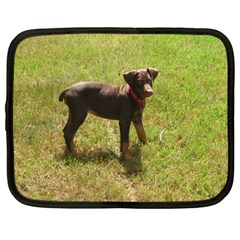 Red Doberman Puppy Netbook Case (Large)