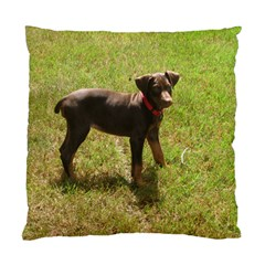 Red Doberman Puppy Standard Cushion Case (One Side)