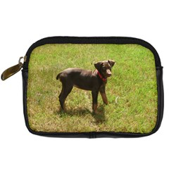 Red Doberman Puppy Digital Camera Cases