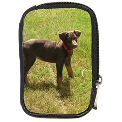 Red Doberman Puppy Compact Camera Cases