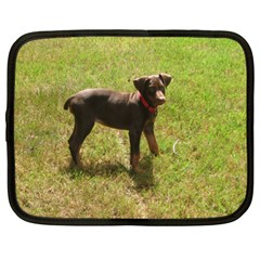 Red Doberman Puppy Netbook Case (XL)