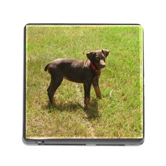 Red Doberman Puppy Memory Card Reader (Square)