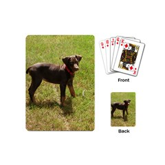 Red Doberman Puppy Playing Cards (Mini)