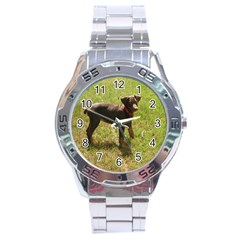 Red Doberman Puppy Stainless Steel Analogue Watch
