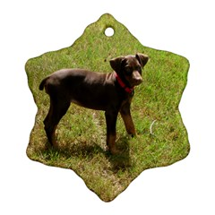 Red Doberman Puppy Snowflake Ornament (Two Sides)