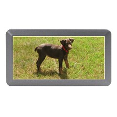 Red Doberman Puppy Memory Card Reader (Mini)