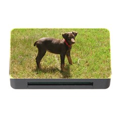 Red Doberman Puppy Memory Card Reader with CF