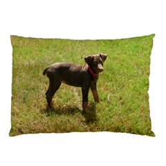 Red Doberman Puppy Pillow Case (Two Sides)