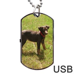 Red Doberman Puppy Dog Tag USB Flash (One Side)