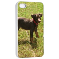 Red Doberman Puppy Apple iPhone 4/4s Seamless Case (White)