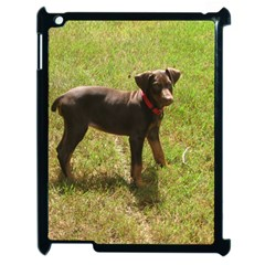 Red Doberman Puppy Apple iPad 2 Case (Black)