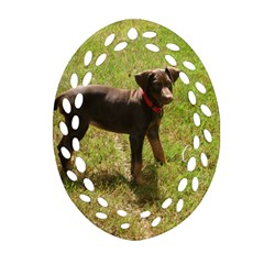 Red Doberman Puppy Ornament (Oval Filigree)