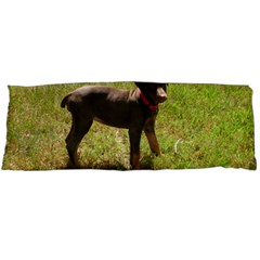 Red Doberman Puppy Body Pillow Case Dakimakura (Two Sides)