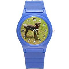 Red Doberman Puppy Round Plastic Sport Watch (S)