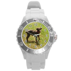 Red Doberman Puppy Round Plastic Sport Watch (L)
