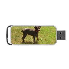 Red Doberman Puppy Portable USB Flash (One Side)