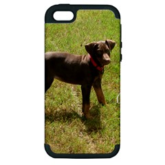 Red Doberman Puppy Apple iPhone 5 Hardshell Case (PC+Silicone)