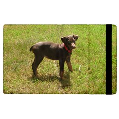Red Doberman Puppy Apple iPad 3/4 Flip Case