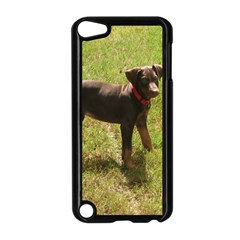 Red Doberman Puppy Apple iPod Touch 5 Case (Black)