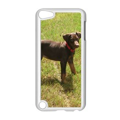 Red Doberman Puppy Apple iPod Touch 5 Case (White)