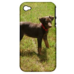 Red Doberman Puppy Apple iPhone 4/4S Hardshell Case (PC+Silicone)