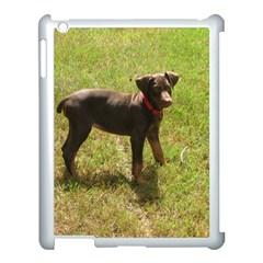 Red Doberman Puppy Apple iPad 3/4 Case (White)