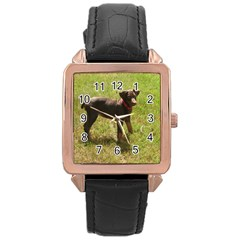 Red Doberman Puppy Rose Gold Leather Watch
