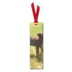Red Doberman Puppy Small Book Marks