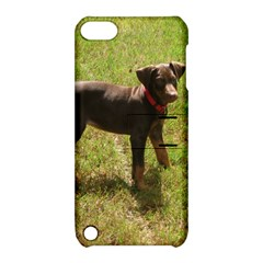 Red Doberman Puppy Apple iPod Touch 5 Hardshell Case with Stand